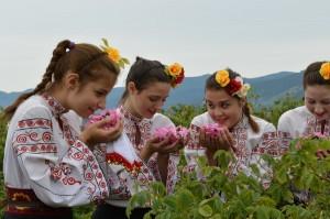 rose-festival-2