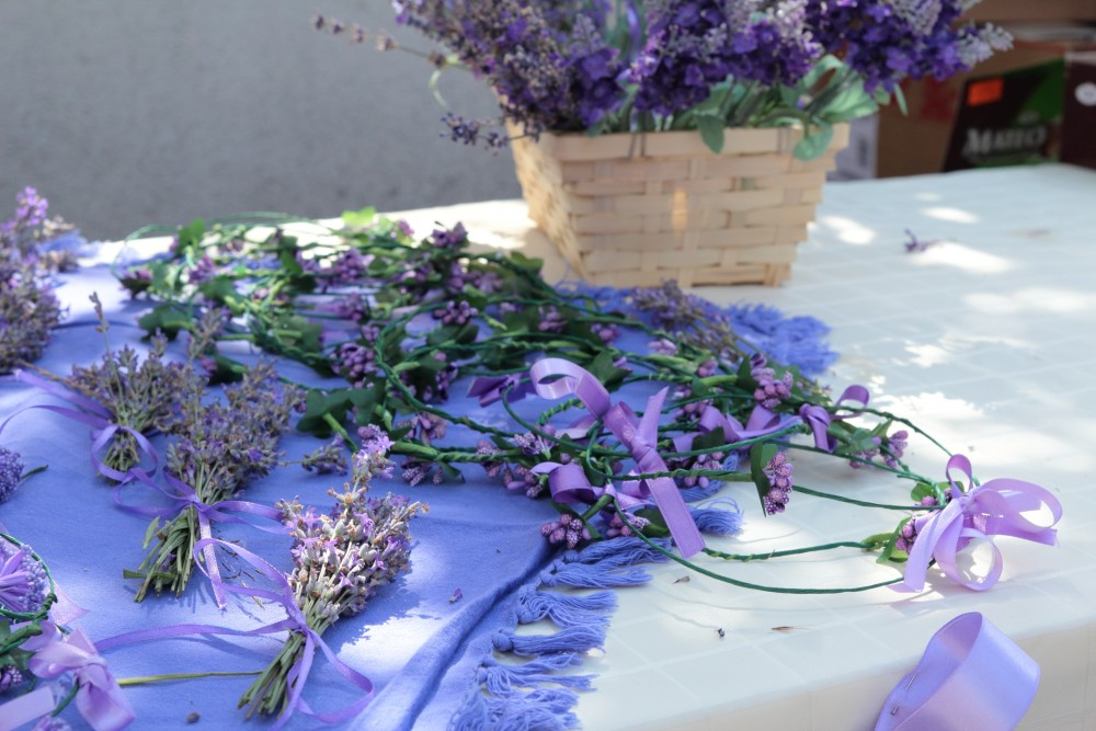 Lavender Festival – Bulgaria Trips And Tours